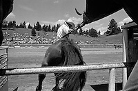 A bronc rider leaves the gate at the annual Lincoln Rodeo in Lincoln, MT in June 2006.  The Lincoln Rodeo is an open rodeo, which means competitors need not be a member of a professional rodeo association.