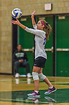 1 November 2015: Yeshiva University Maccabee Defensive Specialist and Outside Hitter Carol Jacobson, a Senior from Seattle, WA, serves against the SUNY College at Old Westbury Panthers at SUNY Old Westbury in Old Westbury, NY. The Panthers edged out the Maccabees 3-2 in NCAA women's volleyball, Skyline Conference play. Mandatory Credit: Ed Wolfstein Photo *** RAW (NEF) Image File Available ***