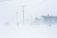 Man walks in a blizzard down the Native Inupiat village of Kaktovik, Arctic Alaska.