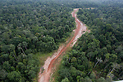 Wawoi Guavi logging concession, Western Province, Papua New Guinea, Wednesday 10th September 2008.
