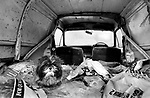 Puppy Farming Wales 1989. A Shih Tzu living in the back of an old van.<br /> A Shih Tzu breeding bitch lives in a rusty ridden Ford Escort van on  Dairy farmer in Blaenycoed / Blaen-y-coed