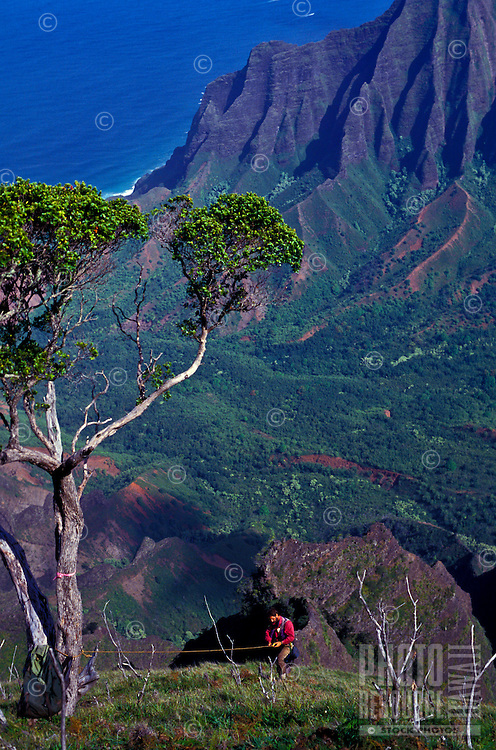 Ken Wood, botanist, in Kalalau Valley, Na Pali Coast State Park, searching for rare and endangered plants. IMAGE CAPTION NEEDS APPROVAL.