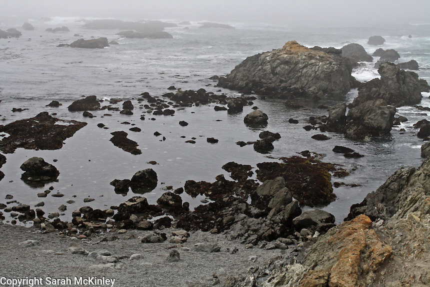 Rocks create a haunting scene in the fog at MacKerricher State Park near Fort Bragg in Mendocino County in Northern California.