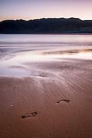 Footprints on golden beach in Totaranui, Abel Tasman National Park, Nelson Region, New Zealand