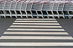 Rows of shopping carts outised store patterns of metal with crosswalk