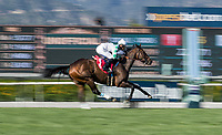 ARCADIA, CA -APRIL 08: Sircat Sally with Mike Smith wins the Providencia Stakes at Santa Anita Park on April 08, 2017 in Arcadia, California. (Photo by Alex Evers/Eclipse Sportswire/Getty Images)