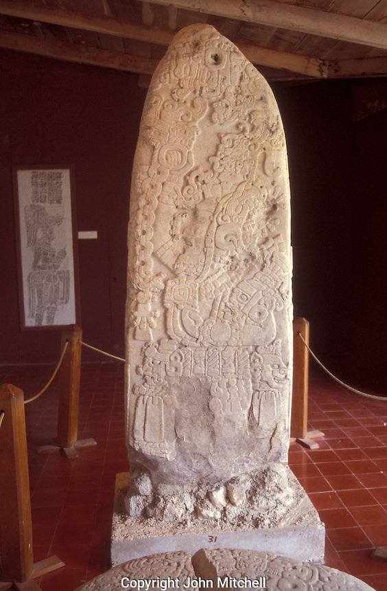Stela 31 in the Tikal Museum, Maya ruins of Tikal, El Peten, Guatemala. Tikal is a UNESCO World Heritage Site....