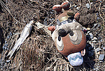 A dead fish and a child's cuddly toy lie in the dirt following the mega tsunami and quake in the Onagawa district of Ishinomaki, Japan on 19 March, 2011.  Photographer: Robert Gilhooly