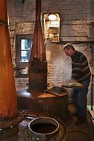 Europe/France/Nord-Pas-de-Calais/62/Pas-de-Calais/ Houlle: Distillerie Persyn- Geni&egrave;vre de Houlle-le distillateur Julien Mahien  et ses alambics //  France, Pas de Calais, Houlle, Persyn Distillery-Gin distiller Houlle-Julien and its Mahien alambics<br /> <br />  Auto N&deg;: 2009-104