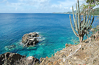 View of the site of the former Tektite along the south shore of St. John from the Tektite trail<br /> Virgin Islands National Park<br /> U.S. Virgin Islands