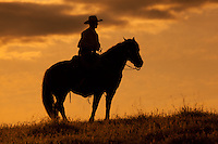 Rider on horseback standing on a hill at sunset