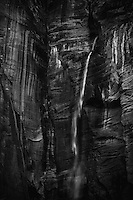 Heavy rains and snow create an increased amount of waterfalls in Zion National Park.  The water then cascades thousands of feet to the valley floor over the towering sandstone cliffs.