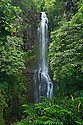 Wailua Falls, Kipahulu District, Hana Coast, Maui, Hawaii.