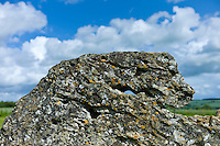 The Rollright Stones monument ancient stone shaped like an animal's head at Little Rollright in The Cotswolds, Oxfordshire, UK.