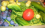 Fresh vegetables from Mom's Oregon garden, Oregon, Pacific Ocean, Plains, woods, mountains, rain forest, desert, rain, Rose City, Portland, Pacific Northwest, Fine Art Photography by Ron Bennett, Fine Art, Fine Art photography, Art Photography, Copyright RonBennettPhotography.com © Fine Art Photography by Ron Bennett, Fine Art, Fine Art photography, Art Photography, Copyright RonBennettPhotography.com ©