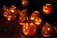 Pumpkin tour 09