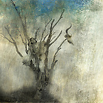 Woman in dead tree. Photo based mixed medium art.<br />