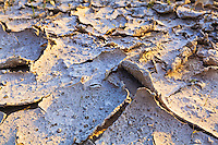 Closeup view of a formerly muddy patch of sandy earth that has dried and cracked.