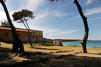 Isola di Pianosa.Pianosa Island.Pianosa. Il borgo.Village.La pineta. The pine forest..