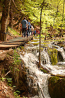 Tourists and walkers by a cascade. Plitvice ( Plitvika ) Lakes National Park, Croatia. A UNESCO World Heritage Site