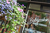 Babycakes Muffin Company in downtown Marquette Michigan.
