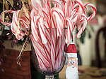 Candy canes at Christmas with he Vinciguerra Family, Jackson, Calif.