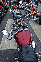 Harley Davidson motorbike, Buell Motorcycle Company bike, motorcycle, detail, transportation