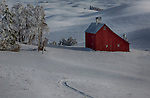 Idaho, North Central, Moscow. A red barn amongst the snow-covered rolling hills of the Palouse.