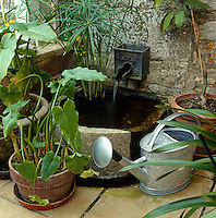 A small water feature has been created in a corner of the conservatory