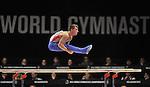 30/10/2015 - Mens All round final - FIG Artistic gymnastics world champs - SSE Hydro Glasgow - UK