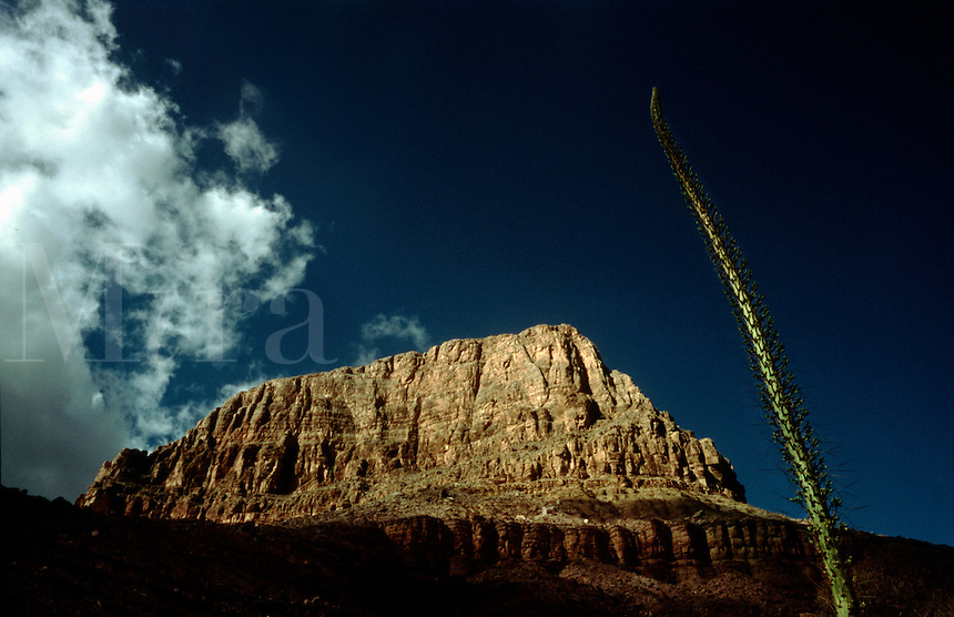 View of a butte along the Clear Creek Trail in Grand Canyon National Park, Arizona.