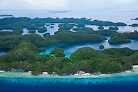 Palau coral reef photos