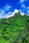 Lush tropical canyons and spires along the Kalalau Trail, Na Pali Coast, Island of Kauai, Hawaii USA