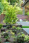 Terraced garden beds in backyard