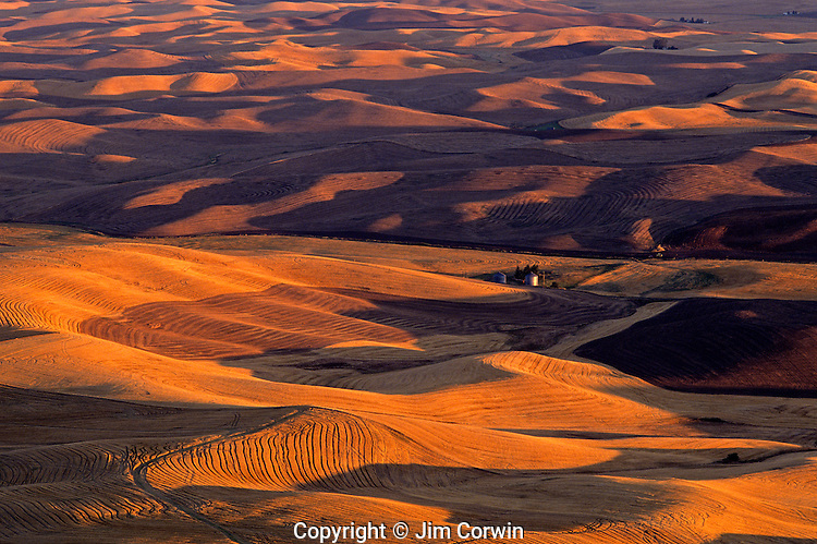 Rolling hills of croplands and wheat fileds at sunset from Steptoe Butte Eastern Washington State USA