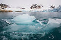 Norway, Svalbard, drift ice in fjord, glacier in background