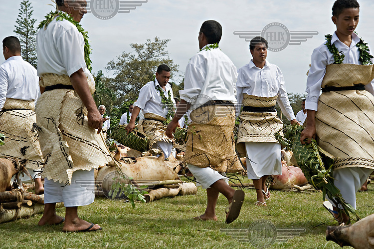 Young men carry leaf baskets amongst the 300 slaughtered pigs presented by the nobles of the Ha'a Ngata tribe for the coronation of King George Tupou V.
