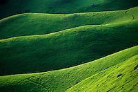 Green hills, N. California<br />