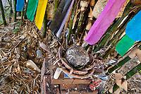 Feathers of a sacrificed chicken are seen at an Afro-Brazilian religious altar outside the temple (terreiro) in São João de Manguinhos, Bahia, Brazil, 9 February 2012.