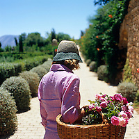 A woman carries a basket of freshly cut garden roses