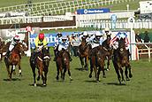 2017 Cheltenham Horse Racing Festival Day 3 Mar 16th