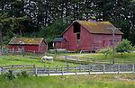 Rural lansdcape, Washington