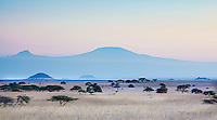 A beautiful soft sunset in muted blues over the plains of Kenya looking across the border to the twin peaks of Mount Kilimanjaro in Tanzania (photo by Wildlife Photographer Matt Considine)