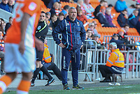 Stand-in Cheltenham Town manager Russell Milton watches on during the second half<br /> <br /> Photographer Alex Dodd/CameraSport<br /> <br /> The EFL Sky Bet League Two - Blackpool v Cheltenham Town - Saturday 22nd April 2017 - Bloomfield Road - Blackpool<br /> <br /> World Copyright &copy; 2017 CameraSport. All rights reserved. 43 Linden Ave. Countesthorpe. Leicester. England. LE8 5PG - Tel: +44 (0) 116 277 4147 - admin@camerasport.com - www.camerasport.com