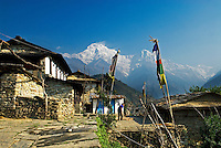 Around every corner of the village Ghandruk in the Annapurna region of Nepal, trekkers experience another breathtaking view of village life set against the spectacular mountain backdrop..