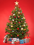 Beautiful decorated Christmas tree with colorful wrapped gifts under it. Isolated on bright red background.
