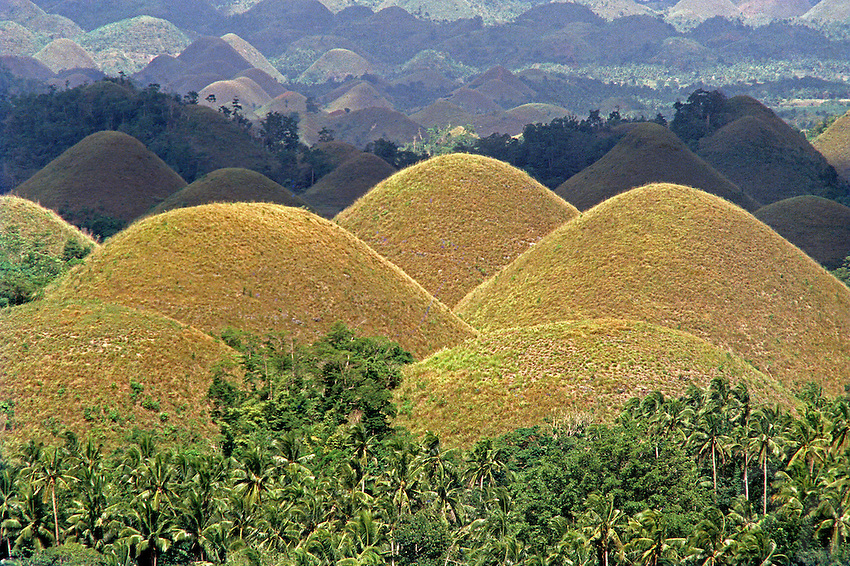 The so called chocolate Hills in the Bohol province of the Philippines