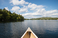 223 Blue Spruce, Loon Lake, NY