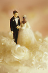 Inter-racial marriage ceremony, caucasian man with black woman (African American woman) figurines on wedding cake, sunset light.