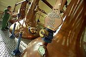 copper stills at the Talisker single malt whisky distillery, Isle of Skye, Scotland.